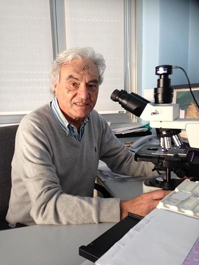 Claudio Gambini